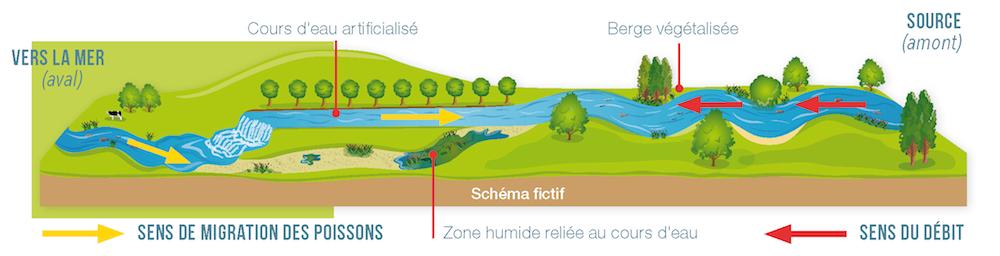 Schema-continuite-eco_1000