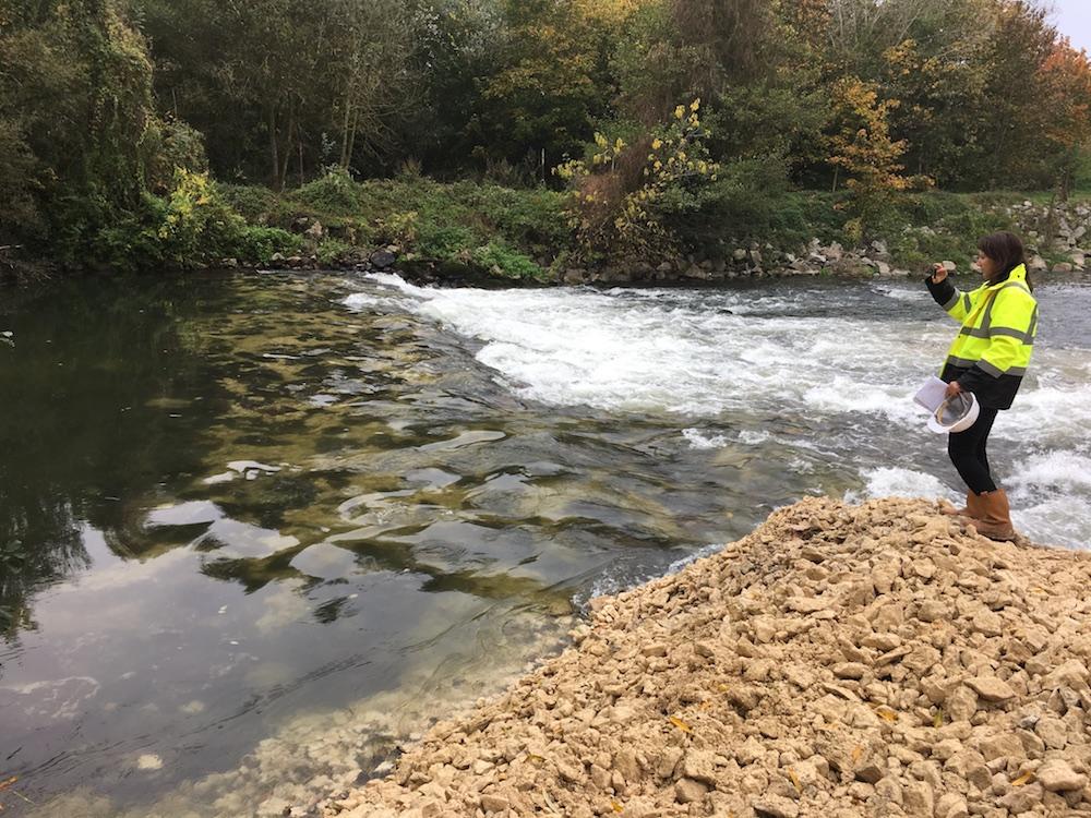 Eure-Aval-Travaux-Berges-IleDuRoi-2017